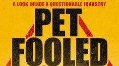 ***** Gross at times, not for kids eyes. - Watch Pet Fooled Online | Vimeo On Demand on Vimeo ****** For the safety of your pet. CN