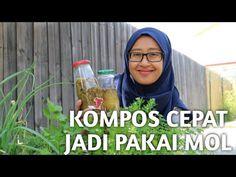 Liquid Fertilizer, Fruit Garden, How To Make Homemade, Bonsai, Backyard, How To Plan, Dan, Youtube, Gardening