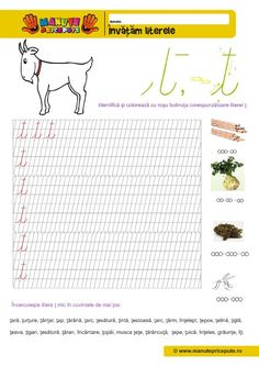 Ţ Archives - Manute Pricepute Preschool At Home, Worksheets For Kids, Stories For Kids, Homeschooling, Lettering, Activities, Roman, Reading, Double Deck Bed