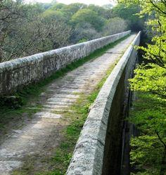 TREFFRY VIADUCT | Luxulyan Valley, Cornwall: The tramway on the Treffry Viaduct     ✫ღ⊰n