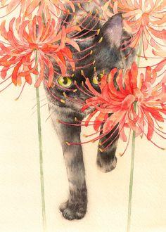 """""""彼岸花と黒猫"""" (Amaryllis and black cat) by Japanese artist Bronco on pixiv"""
