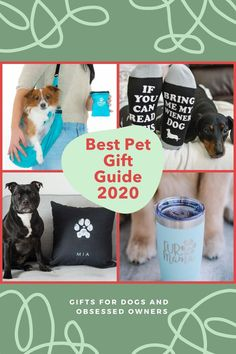 I'm sure we all have that one dog obsessed person on our list. Find the best pet gift with this guide of awesome pet gifts in 2020. Personalized dog gifts, fur mama gifts, gifts for dog dads and dogs! #personalizeddoggifts #furmamagifts #giftsfordogdads #bestpetgiftguide #dogobsessedgifts