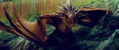 It is at this age they begin to learn how to breathe fire, other elemental dragons get their breath earlier on as it usually (Bar Frost Dragons) doesn't require a demanding change in body temperature. Description from awesomesauce.forumatic.com. I searched for this on bing.com/images