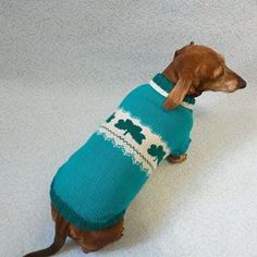 The sweater is finished product for small dogs inches long cm) from withers to tail with a chest girth of inches cm), a neck girth of inches cm) and girth of head girth in front of ears cm) is Dachshund Clothes, Mini Dachshund, Knit Dog Sweater, Dog Sweaters, Winter Knit Hats, Sweater Making, Red Hats, Winter Accessories, Small Dogs