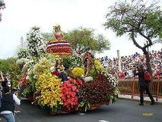 Madeira island - flowers: MADEIRA - Festa da Flor 2009 Flower Festival, Madeira, Portugal