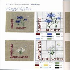 Gallery.ru / Фото #15 - Carres et Carreaux - Orlanda bleuet edelweiss cross stitch point de croix
