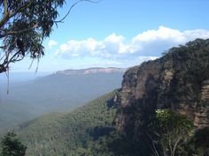 View from Lyrebird Lookout, Wentworth Falls Track, Blue Mountains, Sydney, NSW, Australia