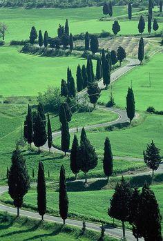 The Wiggle, Montechiello, Tuscany