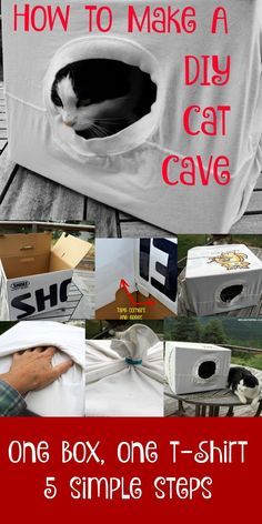 DIY Cat Hacks - Easy DIY Cat Cave - Tips and Tricks Ideas for Cat Beds and Toys, Homemade Remedies for Fleas and Scratching - Do It Yourself Cat Treat Recips, Food and Gear for Your Pet - Cool Gifts for Cats Homemade Cat Toys, Diy Cat Toys, Homemade Crafts, Cat Toilet, Cat Hacks, Cat Diys, Cat Cave, Ideias Diy, Rachel Ray