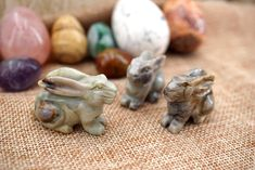 Rabbit 35-40mm (ETS00013) Carving/Sculpture/Easter Gift/Bunny Rabbit Yellow Calcite, Green Aventurine, Easter Gift, Different Patterns, Bunny Rabbit, Rainbow Wood, Amazing Greens, Dinosaur Bones, Carving