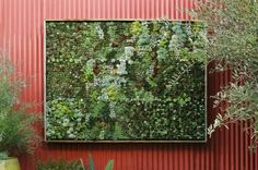 A vertical garden can be done inside or outside...definitely going to try it out!