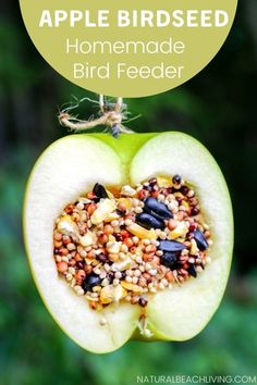 How to Make Apple Birdseed Homemade Bird Feeders Everyone Loves - Natural Beach Living Fall Crafts For Kids, Craft Projects For Kids, Crafts For Girls, Diy For Kids, Kids Crafts, Easy Crafts, Homemade Bird Feeders, Diy Bird Feeder, Preschool Apple Activities