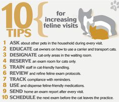 10 tips for increasing feline veterinary visits - The feline facts: A dvm360 data package - dvm360