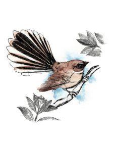new zealand water color fantail tattoos | New Zealand Fantail bird art print