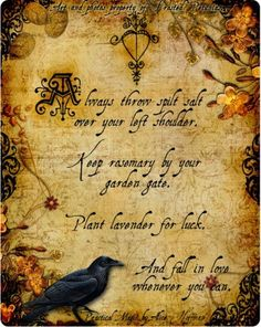 I don't know if this is from the book itself, but it's from one of my favorite movies; Practical Magic (the book is by Alice Hoffman, and I've just started reading it)