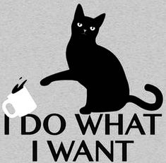 I Do What I Want T-Shirt SnorgTees // cat knocking over coffee mug. Very smug cat tee. I Do What I Want T-Shirt SnorgTees // cat knocking over coffee mug. Very smug cat tee. I Love Cats, Cute Cats, Funny Cats, Funny Animals, Cute Animals, Funny Cat Shirts, Cats Humor, Funny Humor, Crazy Cat Lady