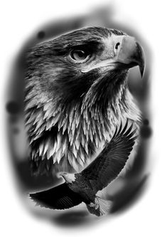 Daddy Tattoos, Lion Head Tattoos, Forarm Tattoos, Hand Tattoos For Guys, Cool Arm Tattoos, Eagle Tattoo Arm, Tattoo Arm Mann, Forearm Tattoo Men, Tattoo Sketches