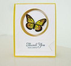 Best of Butterflies - Video Tutorial