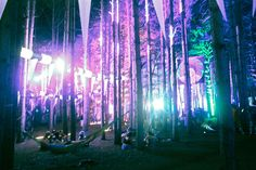 Electric Forest. Can't wait to go back home.