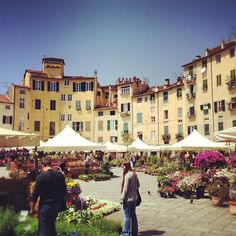 Piazza dell'Anfiteatro in Lucca, Toscana