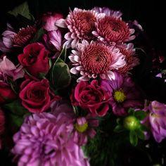 #berry #autumn #colours #dark #deep #flowers #bouquet #cgn #blumenmädchenköln