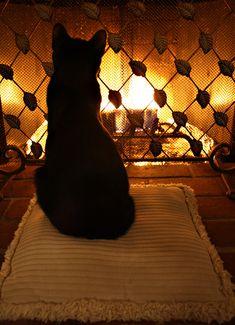 Golden fire. So sweet