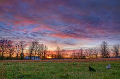 'Caturday Sunset' ~ The sunset this evening was amazing! I enjoyed it with two of our cats.