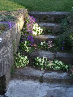 Idées d'escaliers pour jardin | Le journal du jardin Garden Trees, Garden Paths, Trees To Plant, Garden Landscaping, Beautiful Flowers Garden, Beautiful Gardens, Country Cottage Garden, Backyard House, Little Gardens