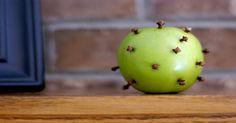 ECO-IDEAS Y RECICLAJE : De Como evitar las moscas Con Este truco sencillo ...