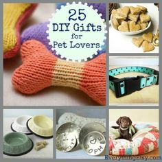 25 DIY Gifts for Pet Lovers – EverythingEtsy.com