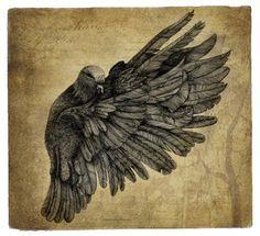 CASSANDRA LEIGH 'Of a feather' found on ididthatad.com I Tattoo, Tattoo Ideas, Moose Art, Feather, Fine Art, Bird, Heart, Illustration, Animals