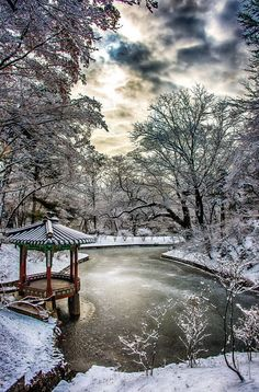 snowy winter morning in Seoul, South Korea Places Around The World, Around The Worlds, Beautiful World, Beautiful Places, Beautiful Scenery, Winter Szenen, Winter Park, Korea Winter, Winter Pictures