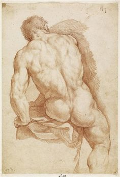 Figure Drawing Renaissance-Zeichnung im Stile Leonardo da Vinci. Human Figure Drawing, Figure Drawing Reference, Guy Drawing, Life Drawing, Painting & Drawing, Human Body Drawing, Anatomy Sketch, Anatomy Drawing, Drawing Studies