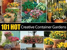 101 Creative Container Gardens In Pictures