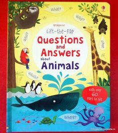 Mic atelier de creatie: (Ushborne) Lift-the-flap Questions and Answers about Animals