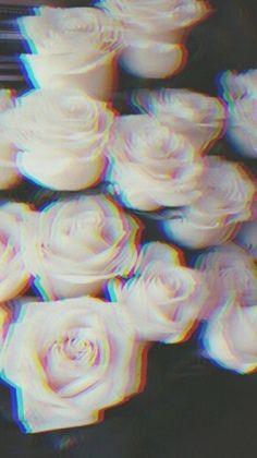 A vida é cheia de rosas hintergrund wallpaper hintergrundbilder - cheia de è Hintergrund hintergrundbilder rosas vida wallpaper 751045675342979857 Tumblr Iphone Wallpaper, Cool Wallpaper, Wallpaper Backgrounds, White Aesthetic, Aesthetic Grunge, Aesthetic Themes, Tumblr Roses, Iphone Hintegründe, Grunge Tumblr