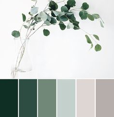 a eucalyptus-inspired color palette a eucalyptus-inspired color palette // green gray natural tones The post a eucalyptus-inspired color palette appeared first on Wandgestaltung ideen. Nature Color Palette, Green Colour Palette, Green Colors, Colours, Green Pallete, Silver Color Palette, Vintage Colour Palette, Color Tones, Blue Colour Things