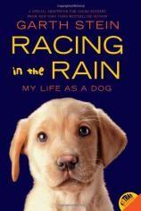 Racing in the Rain: My Life As a Dog - Gareth Stein