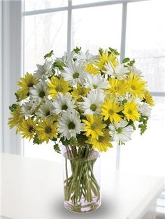 A daisy arrangement in a glass vase that includes white and yellow daisies