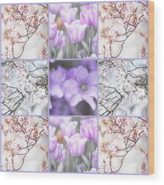 Jenny Rainbow Fine Art Photography Wood Print featuring the photograph Spring Flower Collage. Shabby Chic Collection by Jenny Rainbow Art Prints For Home, Home Art, Fine Art Prints, All Flowers, Spring Flowers, Rainbow Wood, Flower Collage, Thing 1, Wood Print