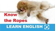 Angol kifejezések egy percben videó lecke. Nézzük meg, mi az angol kifejezés: Know the Ropes jelentése, és hogyan használjuk a hétköznapi angol beszédben.