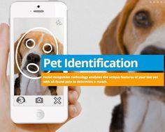 ペット用の顔面認識サービス『Pet Recognition』