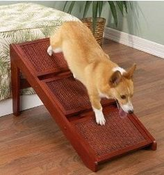 15 Best Dog Ramps And Stairs Images Dog Ramp Dog Steps