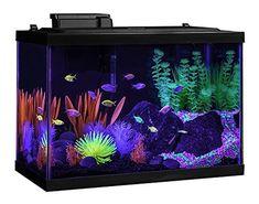 1.5-gallon Round Aquarium United Aqua Culture Aquarium Starter Kit With Led Lighting