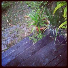 Spring rain in the garden. by dgfoley, via Flickr