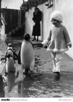 Londra Hayvanat Bahçesi, 1937