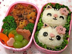 Coolest food ever; I don't know how Bento became a fad, but it is definitely an art.