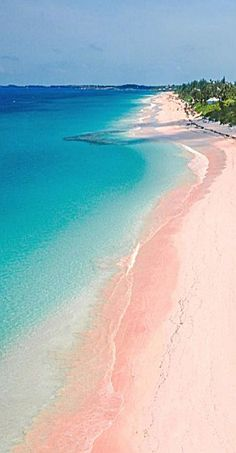 Find Pink Sand Beaches (and Black, and Green.) Walk along the pink sand beaches of Harbour Island in Eleuthera.Walk along the pink sand beaches of Harbour Island in Eleuthera. The Beach, Pink Beach, Green Beach, Pink Sand Beach Bermuda, Elbow Beach Bermuda, Vacation Destinations, Vacation Spots, Dream Vacations, Places To Travel
