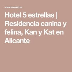 Hotel 5 estrellas | Residencia canina y felina, Kan y Kat en Alicante