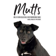 The Mutts Book Launch
